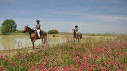 Riding Tuscany Ranch
